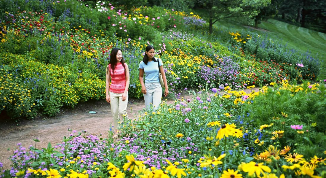 Two young girls walking along a dirt path looking at various types of flowers of pinks, purple, yellow and others.