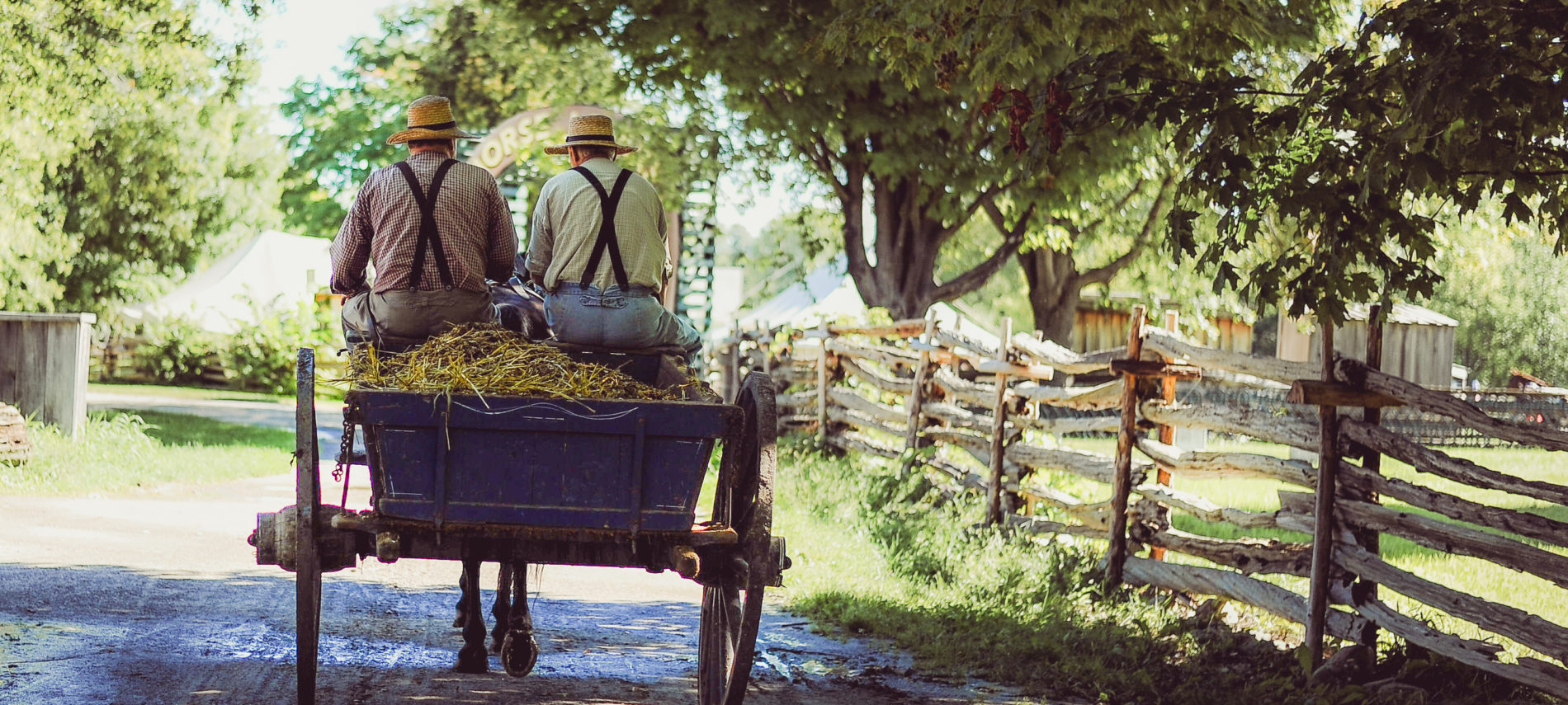 Amish buggy with two men wearing straw hats and suspenders riding in it, split rail fence on side of path.