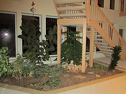 Light colored wooden staircase with railings to 2nd story of cream building, plants in bark, three rectangular windows lower level..