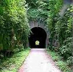 Concrete path in between 2 walls covered with green vines heading toward tunnel.