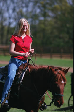 Blond haired girl with blue jeans and red top holding reigns sitting on brown hourse.