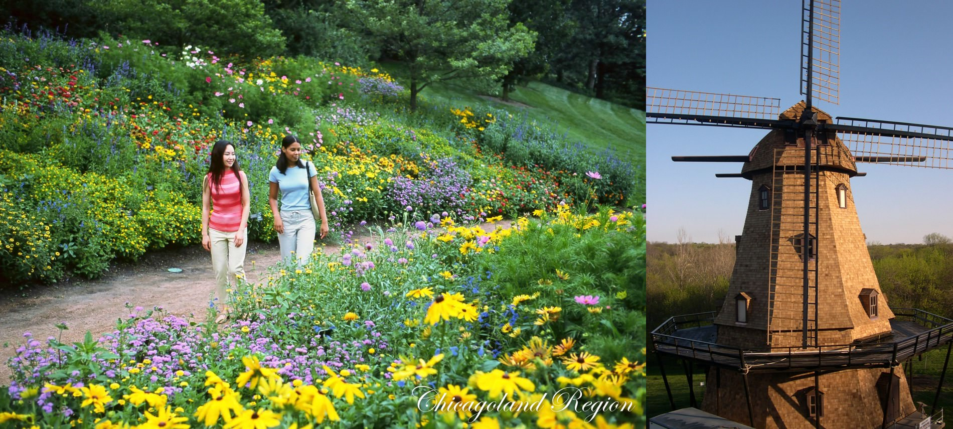 Girls with white jeans and t-shirts walking on dirt path through flower garden, Concrete Windmill on right.