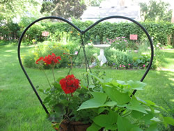 Heart-shaped iron planter with red carnations with lush greenery around yard with hedges.